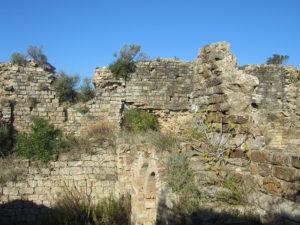 castel di pietra foto1
