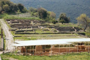 roselle etrusca foto