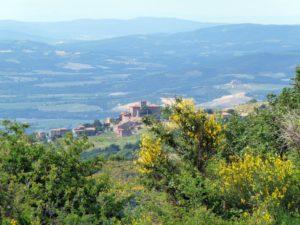 castello-di-castiglioncello-1